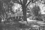 1950 : Le jardin des abbés